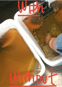 Ion_Footbath_Water_With_and_Without_Feet_Side_by_Side